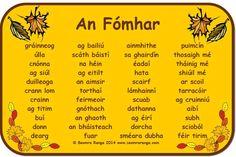 An Fomhor Irish Gaelic Language, Gaelic Words, Primary Teaching, Primary School, Irish Pride, Irish Celtic, Classroom Activities, Languages, Education