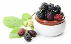Study Finds Mulberry Leaf Boosts Heart Health, Prevents Heart Disease