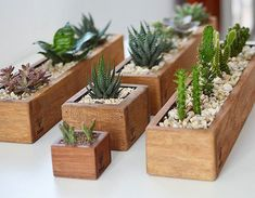 Pin on Indoor plants Planter Box Centerpiece, Diy Planter Box, Wooden Planters, Diy Planters, House Plants Decor, Plant Decor, Decoration Plante, Succulent Gardening, Plant Shelves