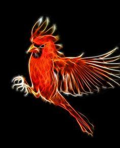 The largest online art gallery and community Fractal Images, Fractal Art, Beautiful Wolves, Beautiful Birds, New Media Art, Fractal Design, Airbrush Art, Afro Art, Rainbow Art
