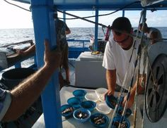 Amazing Personalized Catering Service. That's ... Miami Charter Boats catering provides superb service and a diverse menu. See more at our website http://www.miamicharterboat.com/fishing/index.htm #Baysidecharterboat, #Baysidefishingcharterboat, #fishingcharterboatMiami,