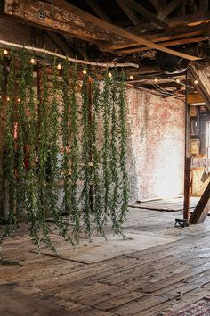 "A gorgeous green-only ceremony or photo booth Backdrop. Pair with café lights, or more industrial outdoor lights, and ""found"" wood to pair lush with warmth, tropical with classic."