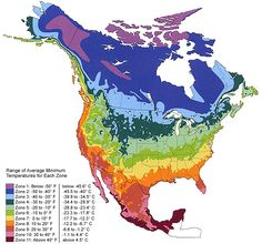 Below are the Climate Zone Maps for North America, the UK and Australia as of 2012. The colors indicate the minimum average temperature for a region. Due to slight changes in microclimates, the actual temperatures may vary.