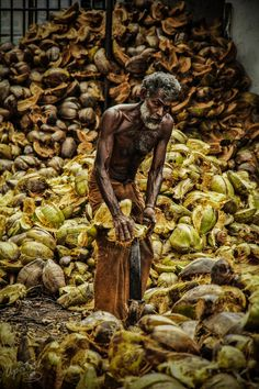 coco-NUT's job by Ariel Patish, via 500px