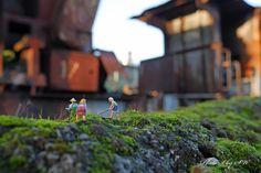 Ackern im Ruhrpott... | Flickr - Photo Sharing!