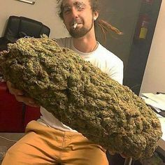 What would you do with this much nug? #herb #cannabis #dank #420