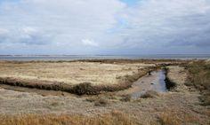 Stephen Emms explores the Dengie Peninsula, a hidden gem in Essex
