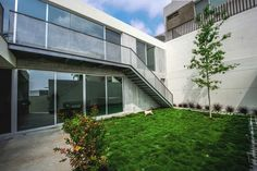 Galeria de Casa IPE / P+0 Architecture - 9