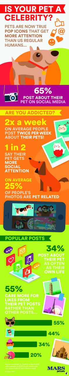 Pets & Social Media: How to make your pet a celebrity! Article contributed by Mars Pets