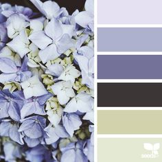 """today's inspiration image for { flora hues } is by @petiteharvest ... thank you, Penny, for another *breathtaking* #SeedsColor image share!"""