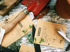 Gardening tools by laurastolfi | Stocksy United