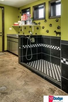 Small grooming salon front desk and work station dog grooming contemporary mud room with daltile plaza nova black shadow 12 in x 24 in porcelain floor and wall tile concrete floors solutioingenieria Gallery
