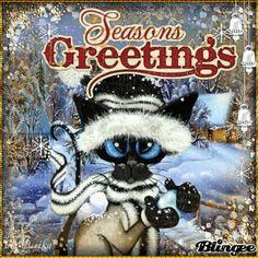 Meow X'mas   #CHRISTMAS CAT ~ using stamp Amy Lyn Bihrle's Art challenge
