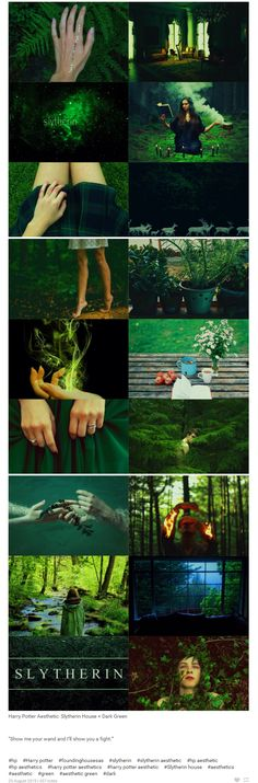 """foundinghouses: Harry Potter Aesthetic: Slytherin House + Dark Green 