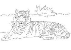 Gatos para colorear 30 Animals, Art, Breeds Of Cats, Drawings Of Cats, Colors, Art Background, Animales, Animaux, Kunst