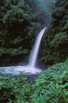 ✯ Tropical Waterfall
