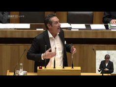 HC Strache - Korruption der SPÖ in Wien, Untersuchungsausschuss - Sondersitzung 8.11.2012 #hcstrache #FPOE #Austria #Wien #Salzburg #Graz #Parlament