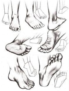 Gráficos que muestran como dibujar partes del cuerpo