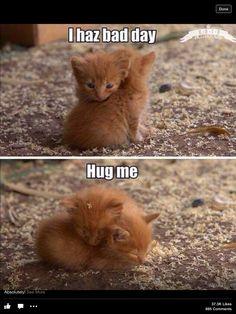 So sweet! Cutie Pies!