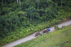 Amazonas,Brasil