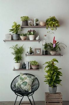 tall Modern and elegant vertical wall planter pots ideas 50 - . - tall Modern and elegant vertical wall planter pots ideas 50 – … – Cook - Vertical Wall Planters, Modern Planters, Outdoor Wall Planters, House Plants Decor, Plant Wall Decor, Home Plants, Interior Plants, Living Room Plants Decor, Bedroom Plants Decor