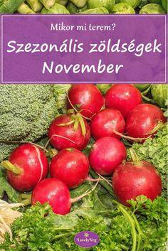 Mikor mi terem? Szezonális zöldségek novemberben November 3, Vegetables, Food, Essen, Vegetable Recipes, Meals, Yemek, Veggies, Eten