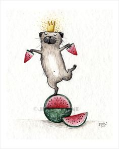 1676-krone-melone