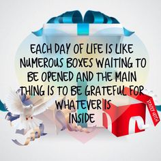 Each day of life is like numerous boxes waiting to be opened and the main thing is to be grateful for whatever is inside.   Colossians 3:15 And let the peace of God rule in your hearts, to which also you were called in one body; and be thankful