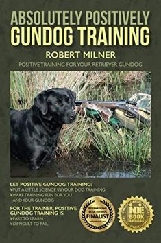 [Dog Training Books] Absolutely Positively Gundog Training: Positive Training for Your Retriever Gundog * See this great product. (This is an affiliate link) Gun Dog Training, Dog Training Books, Brain Training, Operant Conditioning, Dog Thoughts, Hunting Dogs, Dog Behavior, Dogs And Puppies, Positivity