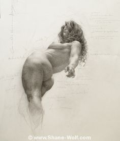 Shane Wolf great foreshortening