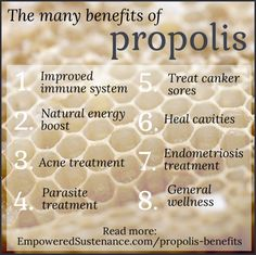 benefits of propolis (energy boost, endometriosis, cavity treatment, and reduce the enzyme that causes plaque to build on teeth) Propolis Benefits, Calendula Benefits, Matcha Benefits, Coconut Health Benefits, Honey Benefits, Bee Propolis, Natural Energy, Natural Cures, Natural Healing