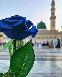 """Rasûlullah ﷺ şöyle buyurdu:""""Birbirinizle ilginizi kesmeyiniz, sırt dönmeyiniz, kin tutmayınız ve hased etmeyiniz. Ey Allah'ın kulları, kardeş olunuz!"""" (Buhârî, Edeb, 57)pic.twitter.com/FBjkTRK6hb Mecca Wallpaper, Quran Wallpaper, Islamic Wallpaper, Islamic Images, Islamic Pictures, Mecca Masjid, Medina Mosque, Mosque Architecture, Flowery Wallpaper"""