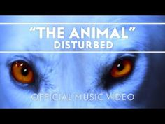 ▶ Disturbed - The Animal [Official Music Video] - YouTube