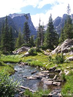 The Trail to Emerald Lake in Rocky Mountain National Park {MamaBuzz}