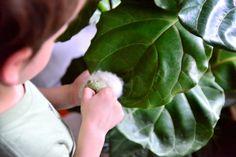 The Five Key Learning Areas of Montessori  - how we montessori