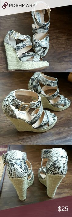 Steve Madden Kloudd Wonderful Wedges! Sexy Snake Skin print. Gold buckle. Beautiful summer shoe. 5.5in heel! Excellent condition! Worn a handful of times! Pet n smoke free home. Steve Madden Shoes Wedges