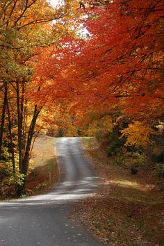 Fall Creek Falls Colors