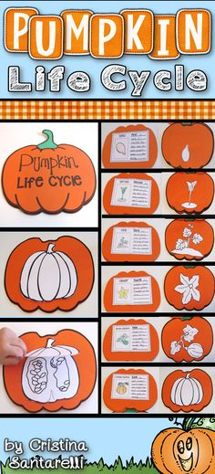 This Pumpkin Life Cycle craft and activities are perfect for your pumpkins & fall units! In the Pumpkin Life Cycle craft, your students will have lots of fun learning all about how a pumpkin grows.