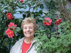 Bernard Mander writes: My garden is in Marina Bay Richmond. We are on the water, and high tide is only 50 yards from the flowers. Our roses were  pruned and all the leaves removed in mid January, and are now growing like mad. They are full of new leaves and buds and a few flowers. Also the apple trees are in blossom, the bulbs are up, white alyssum is everywhere and the pansies are looking very happy.   The garden in front of the house is full of camellias, and roses up to the eves.