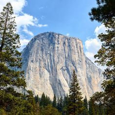 First stop : Yosemite and the massive El Capitan.  I can't describe the feeling of standing at the bottom of that rock... This is maybe the moment I realized I was going to see amazing places and that I'll never have enough time to enjoy it properly.  #roadtrip #memories #yosemite #elcapitan #nationalpark #california #travel #1picaday
