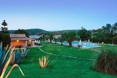Corfu hotel Bella Mare is a four-star hotel in the wonderful island of Corfu Greece, in Kassiopi village, next to Avlaki beach.It is ones of the best family friendly corfu hotels. If you are looking for one of the best Corfu hotels, Bella mare is for you. Corfu Hotels, Green Scenery, Corfu Island, Corfu Greece, Amazing Gardens, Dolores Park, Beach, Travel, Spring