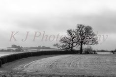 2014 snow full Bedfordshire UK, landscape monochrome photography