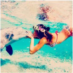 Someday I will swim with dolphins