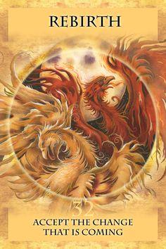 °Rebirth by JodyBergsma - The phoenix is a symbol of triumph over adversity (nl)