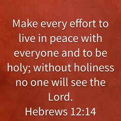 Make every effort to live in peace with everyone and to be holy; without holiness no one will see the Lord. Biblical Verses, Scripture Verses, Bible Verses Quotes, Bible Scriptures, Christian Life, Christian Quotes, God Jesus, Jesus Christ, Bible Verses About Confidence