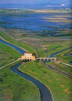 Tuscany: La diaccia botrona (Castiglione della Pescaia ) Grosseto