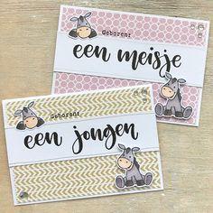 Diy Cards Baby, Baby Zebra, Marianne Design, Baby Birth, Baby Design, Cardmaking, Stampin Up, Scrapbook, Crafty