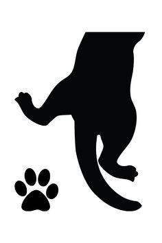 cats swingerclub atelier blanc noir