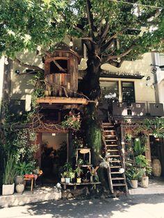 広尾でディナーを!という時にぜひおすすめしたいのいが、「レ・グラン・ザルブル」。東京の広尾にあるカフェ、レストラン、フラワーショップが融合されたような場所。ここは、石原さとみさんと松下奈緒さんが主演を務めた、あの人気ドラマ「ディアシスター」に登場するカフェとして人気を博しています。そこで、今回は一体どんな場所なのかをご紹介したいと思います!...