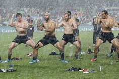 I Ruck: The Queer Male Rugby Body | White Tower Musings